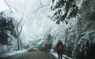 风雪中,市民登山赏雪景。 本报记者 刘硕摄