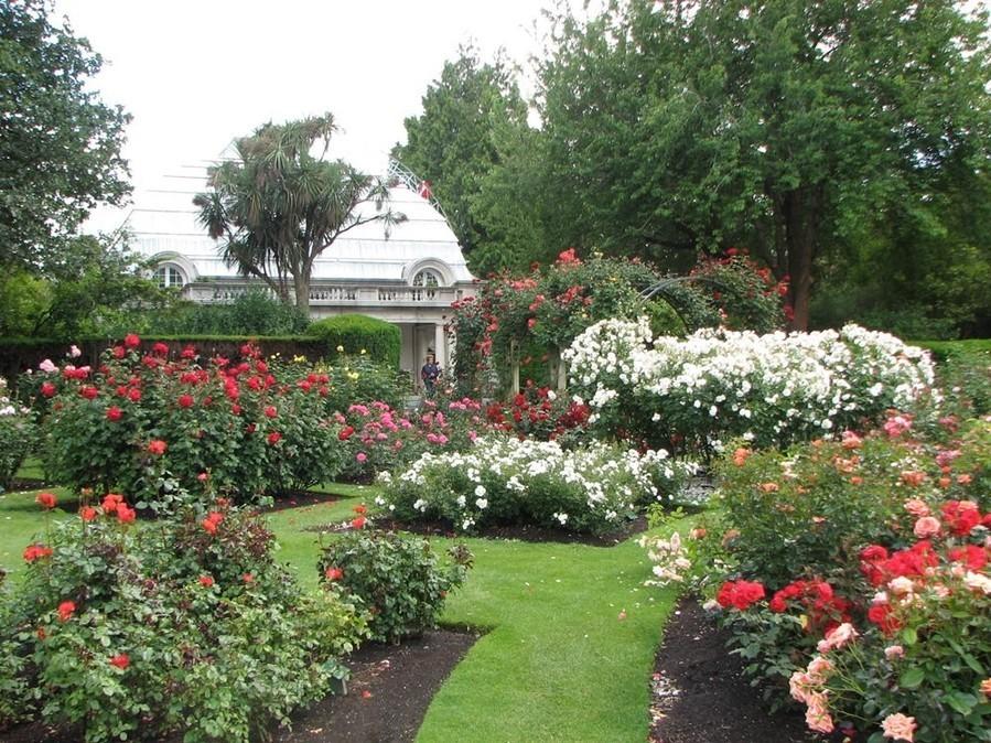 张庆费:美丽新西兰之二 基督城植物园(图)