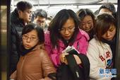 地铁10号线成最挤线路 日均客流量破百万