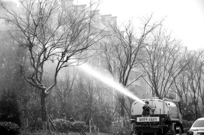 李小雪/图为7日,湖南省郴州市园林工人用洒水车清除树上的冰冻积雪。...