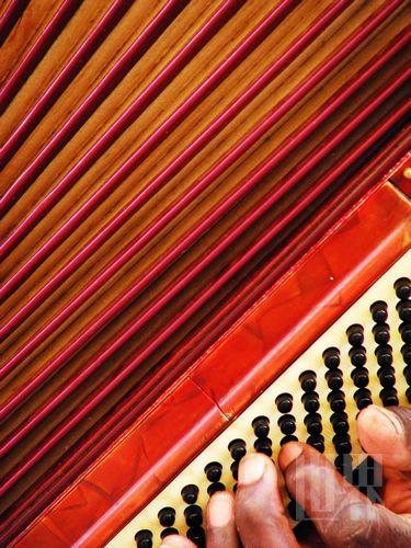 手风琴的左手贝司键