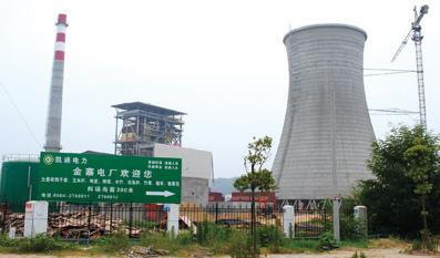 武汉凯迪强征基本农田建电厂