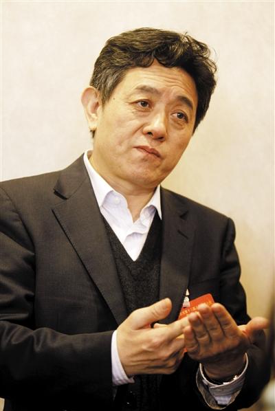 去年1月,人大代表、副市长丁向阳在北京两会上。资料图片