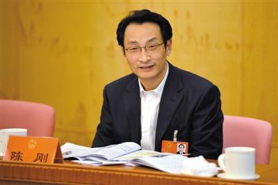 昨日,人大代表、副市长陈刚在丰台团全团会上。