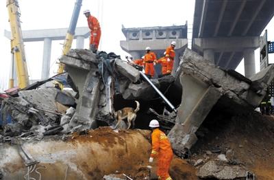 2月2日,消防员带着搜救犬在废墟上搜救。