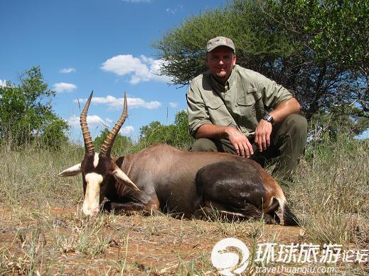 国外兴起狩猎之旅 非洲野生动物遭殃(组图)