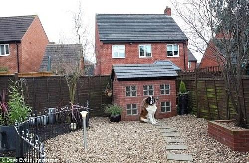 男子复制自家公寓造型 为爱犬建造豪华犬舍(图)