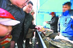 庙会烤鳄鱼游客不买单