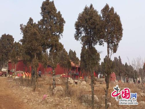历山玉皇庙位于郁郁葱葱的小山丘上