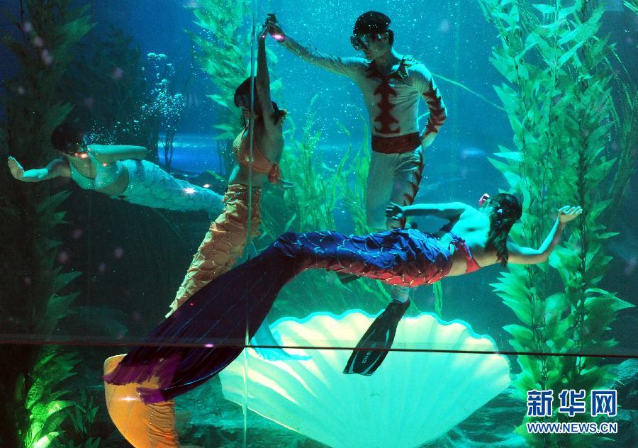 青岛海底世界美人鱼_青岛海底世界景区推出国内首部海底情景剧梦幻现实版\