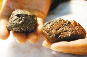 -丰泽堂负责人周祖慎收藏的两块陨石