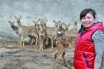 村民开办家庭动物园免费开放