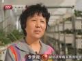 中国梦(三)现代农业