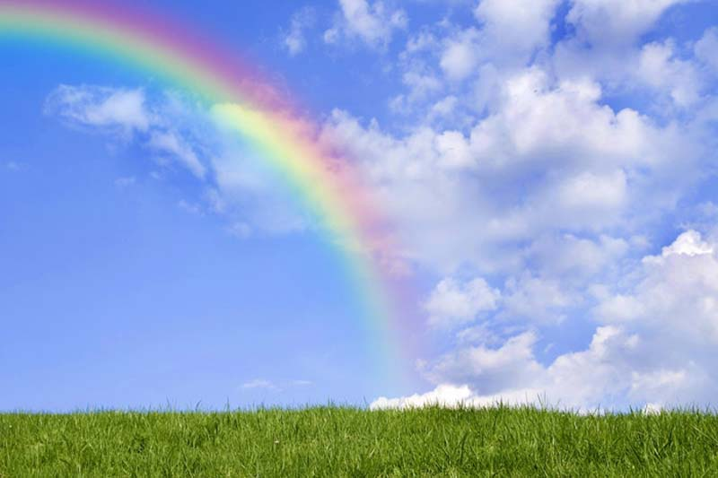 背景 壁纸 草原 风景 天空 桌面 800_533图片