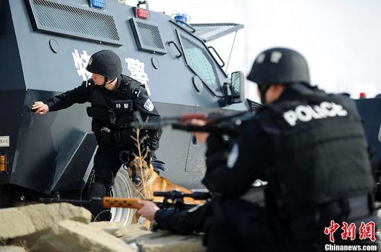 3月12日,新疆乌鲁木齐特警八支队在市郊一废弃院落举行战术突入抓捕实战演练。图为特警队员协警犬随时准备出击。刘新 摄