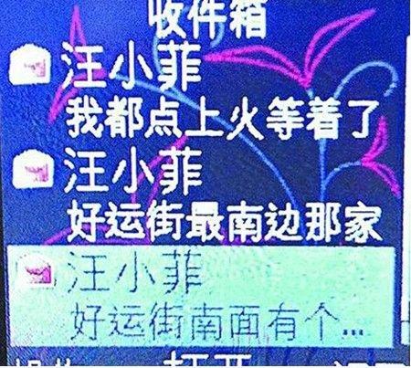 揭秘章子怡汪小菲吕婉柔大S仔仔蓝正龙的混乱情史