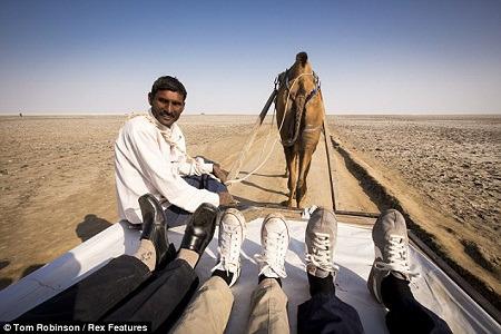 汤姆和维莉蒂来到了印度,一名向导的脚丫加入了合照