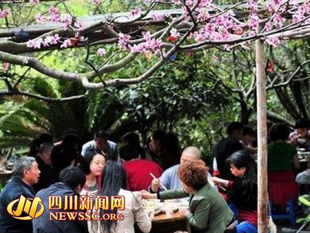"""彭州市风旅办主任段毅告诉记者,葛仙山的田园风光承载""""绿色""""名片,农庄"""