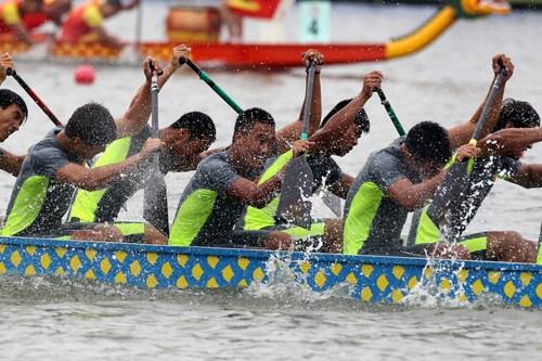 专业龙舟年薪组图20万选手皮划艇队员被挖参赛(专业)陈增乒乓球图片