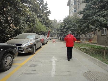 老式小区中的停车位总是很紧张图片