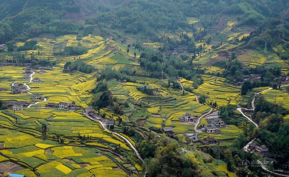 美丽中国:俯瞰田园画卷(组图)