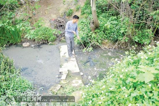 """溪内因养殖场粪便长期累积,已结了一层厚厚的""""黑壳""""。"""