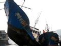 遇难船只目击者