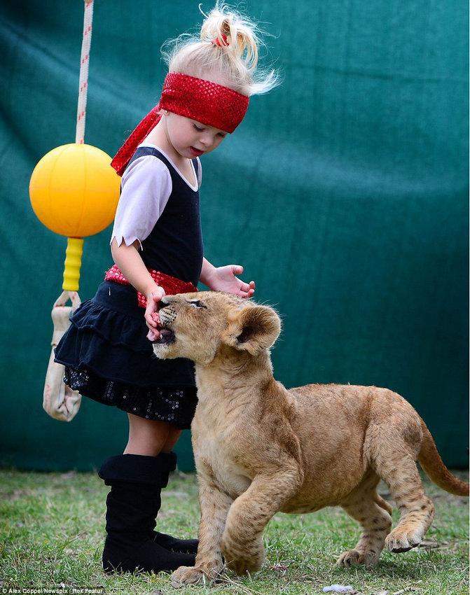 澳大利亚/一些照片显示了布拉克斯顿与幼狮一起训练的情景。一些照片显示...