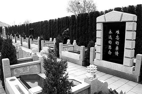 墓地布局设计图
