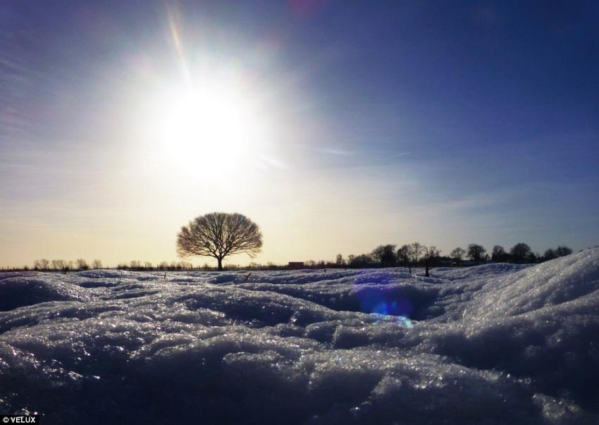 日光摄影大赛捕捉自然光美景(组图)