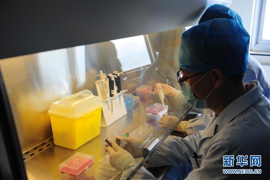 2013年4月3日,北京市疾病预防控制中心已在国家疾控中心领到了针对H7N9实验室检测试剂,检验技师正在实验室内规范H7N9禽流感的检测流程。新华网 李欣