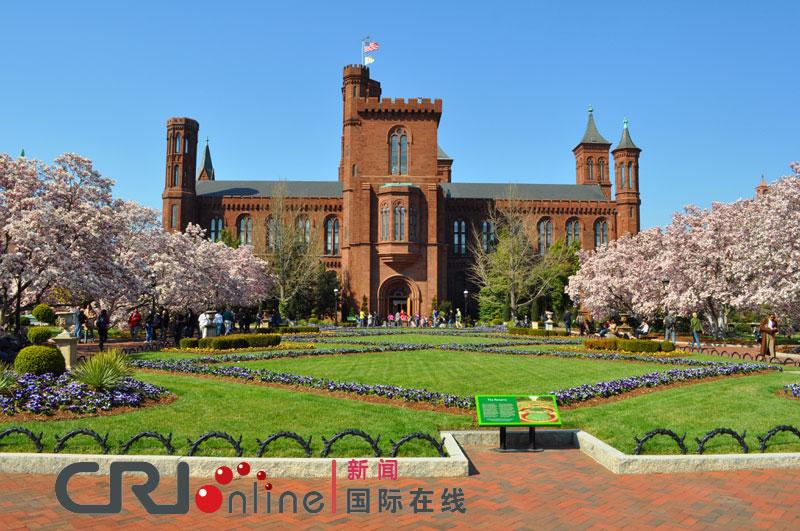 美国首都华盛顿樱花开放(高清组图)
