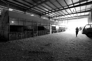 4月7日,诸暨市农贸批发市场家禽批发摊位门庭冷落 新华社发