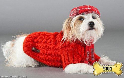 宠物狗时装:红色手工编织羊毛衫 45英镑 格子呢帽子 59英镑