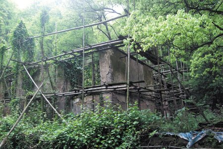 没了屋顶,修缮中断多年的王东原公馆杂草丛生,破败不已。周和平 摄