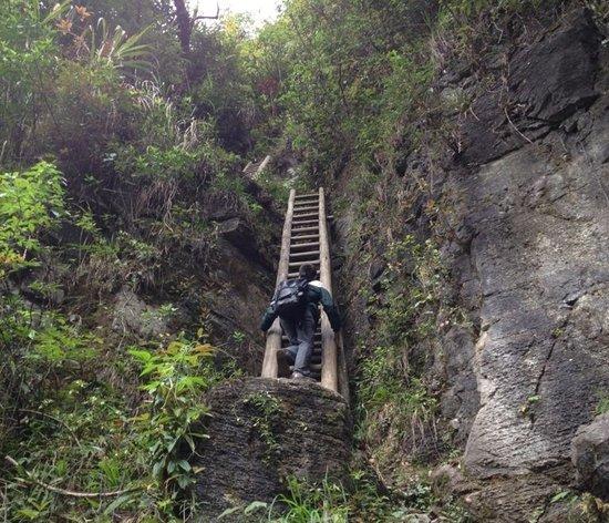 从下面往上看,梯子垂直90度。