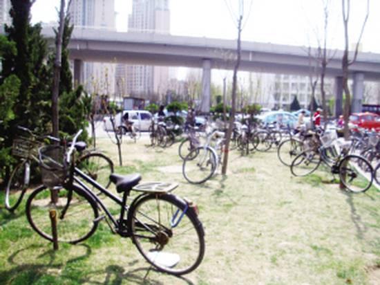[天津]地铁站外绿地 成了自行车的停车场图片