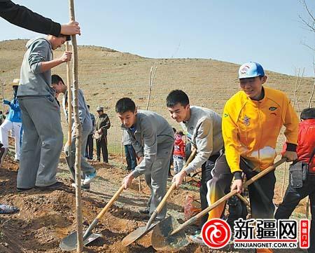 新疆飞虎广汇男篮青年队的队员正在植树