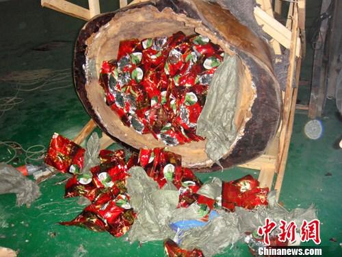 图为藏于木雕内部的毒品。 中新社发 榕警 摄