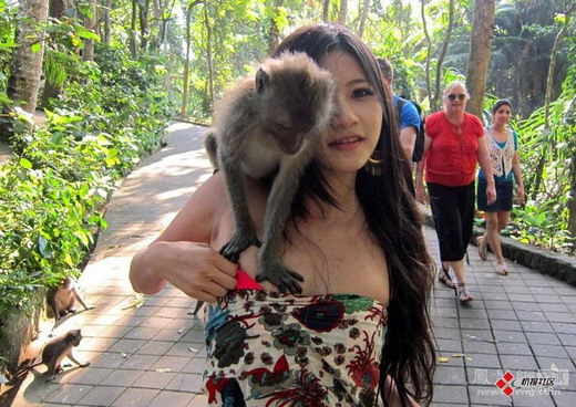 美女遭猴子非礼扒衣服