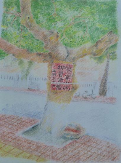 佛山女孩手绘的青岛游记图