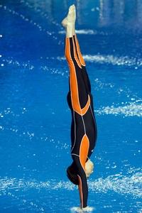 沙宝亮的跳水技巧被赞堪比省队队员