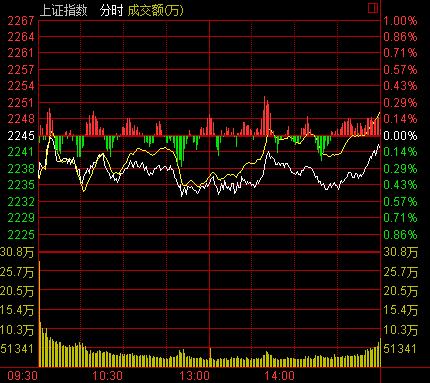 芦山地震后首个交易日沪跌0.11% 创业板大涨