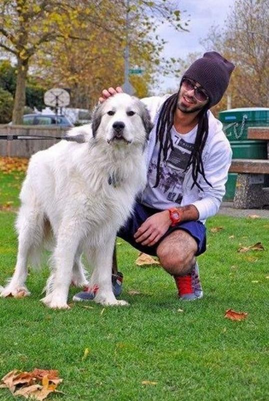 狗和人�y�'��)�al�����:)�h�_经查证,该男子为迪拜本地人,名叫omar borkan al gala,是模特和摄影师