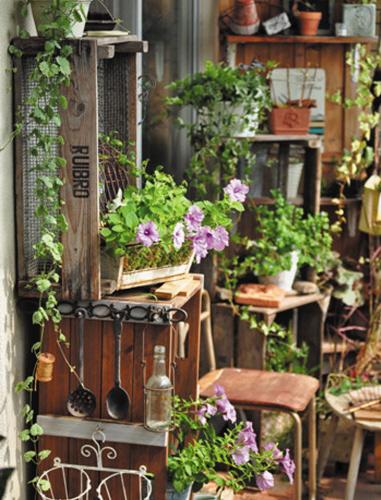 市民李先生咨询:一直想在阳台上打造一个小花园,但感觉是个非常大图片