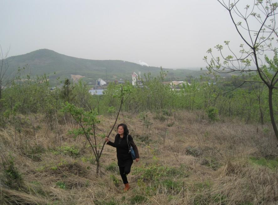 4月8日,朱桂枝孤单地站在自家林地里,不远处就是大生化工厂。