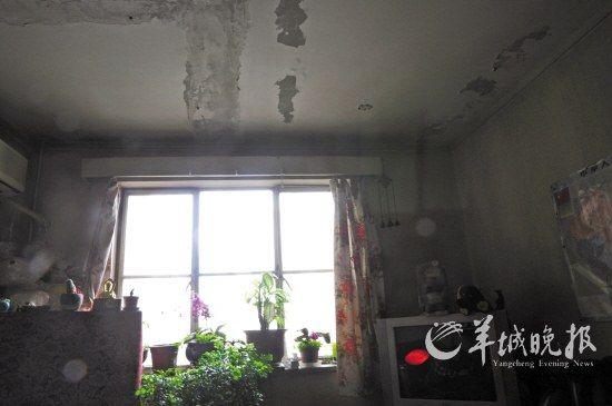 踏进朱令的家,会让人感到时空在20年里凝滞了,陈设简陋,墙壁斑驳。昏暗的光线中,一切还像是停留在上世纪90年代