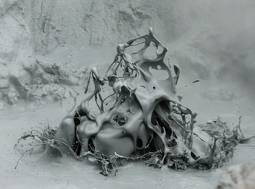 鸟类冠军作品,《冰雪休憩地》(A Frosty Resting Place),摄影师Bernd Nill。