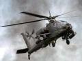 外媒体关注中国武装直升机