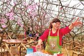 立夏后游玩农家乐 北京十大新兴乡村游